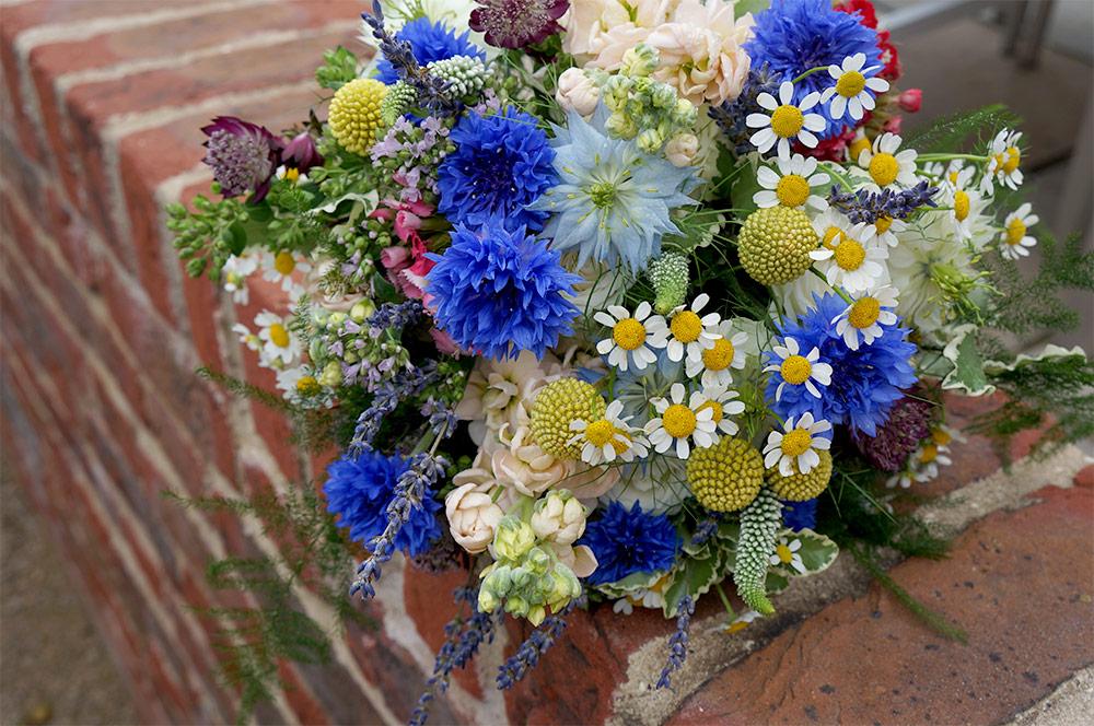 Nigella, Cornflower, Veronica & Daisy Daisy Bouquet